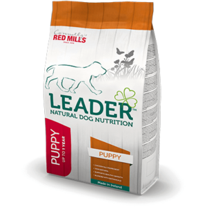 Red Mills Leader Puppy