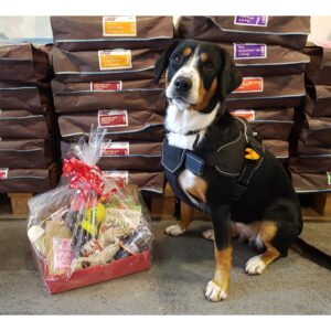 Birthday Doggy Hampers