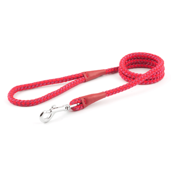 Nylon Rope Lead