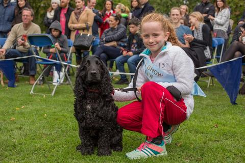 Dartmouth-square-dog-show-pet-parlour-terenure-raw-dog-food-jpg