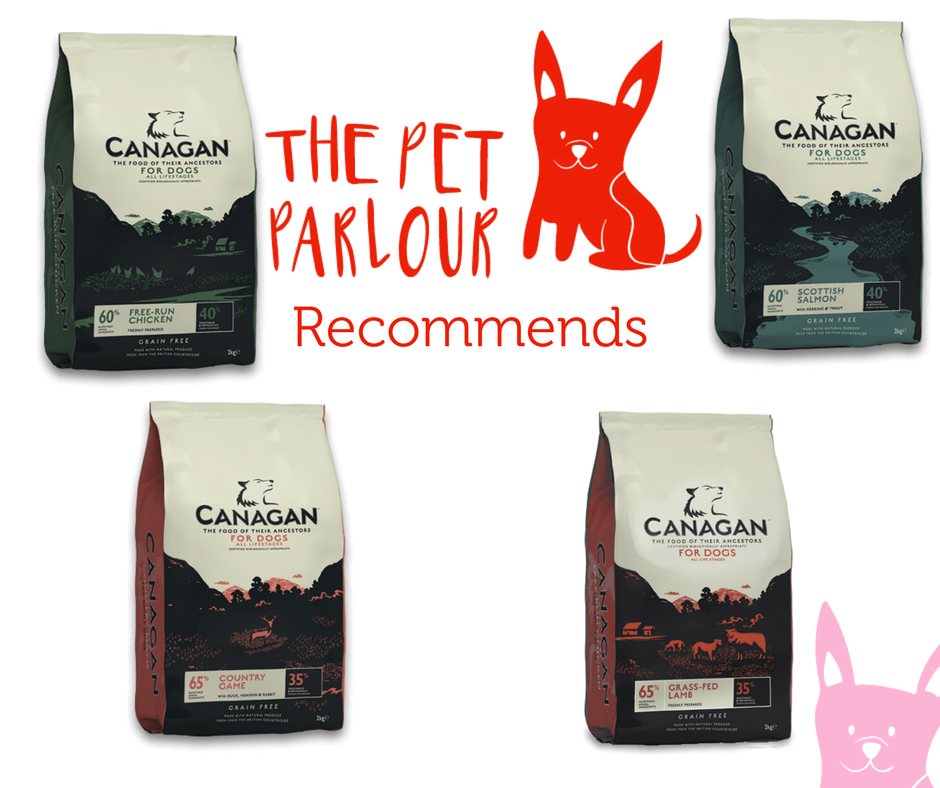 Pet_Parlour_recommends_Canagans_Grain_free_dog_food_1.png?v=1498643155