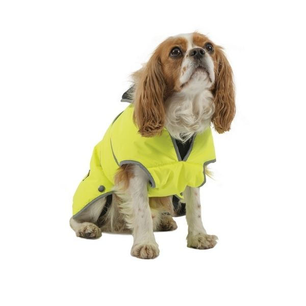 Ancol Stormguard Coat for Dogs Hi-Vis From The Pet Parlour Dublin