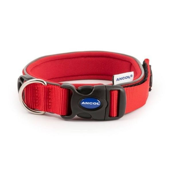 Extreme Dog Collar From The Pet Parlour Dublin