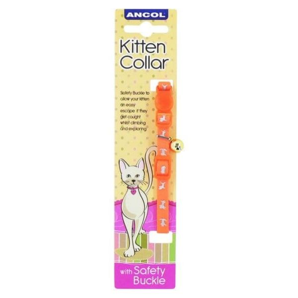 Ancol Kitten Orange Hi-Viz Collar Pet Parlour Dublin
