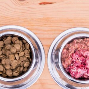 should I feed my dog raw dog food in ireland?