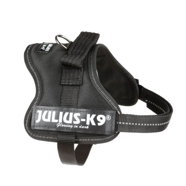 Dog Harness Julius K9 Black Pet Shop Dublin