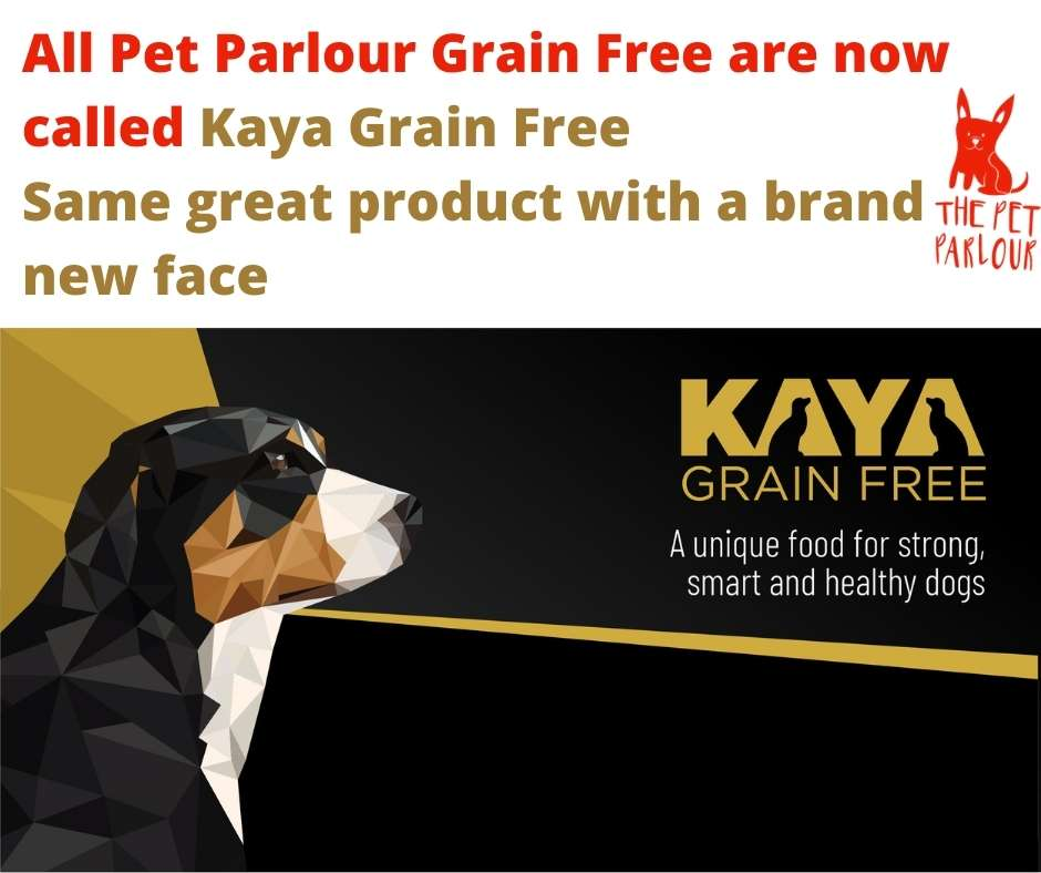 best grain free dog food in Ireland