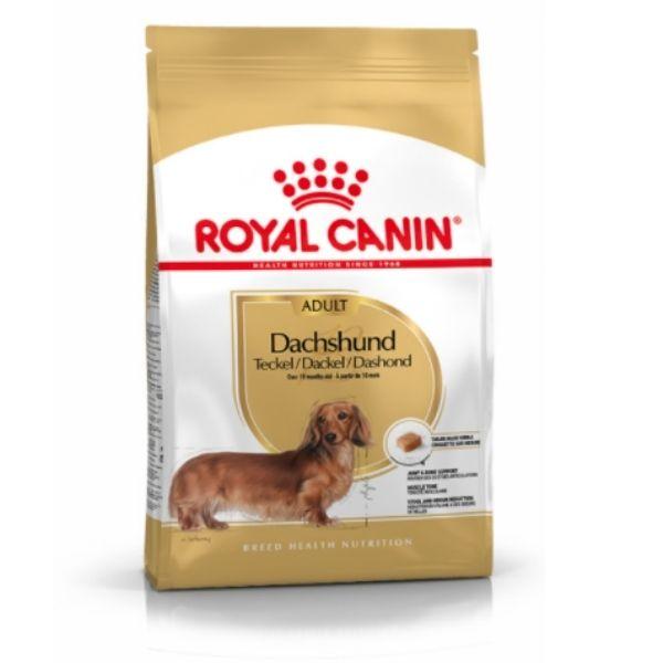 dog food for adult dachshund