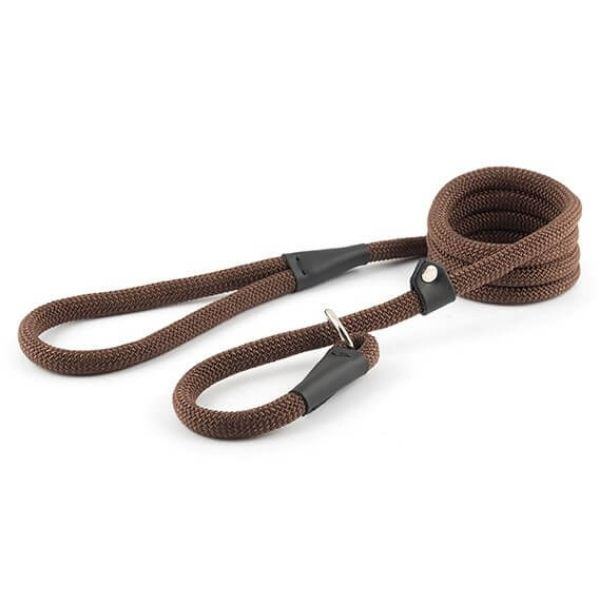 buy dog leads online from the Pet Parlour